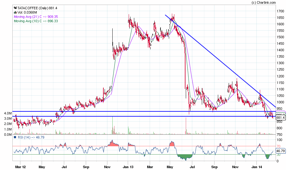 tatacoffee_daily_14-02-2014